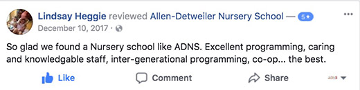 ADNS Facebook Review